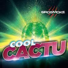 Brosmoke Cool Cactus 200g